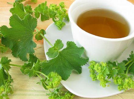 Чай с манжеткой