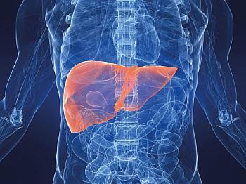 Очаговая метаплазия желудка