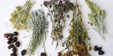 Ванны из лекарственных трав