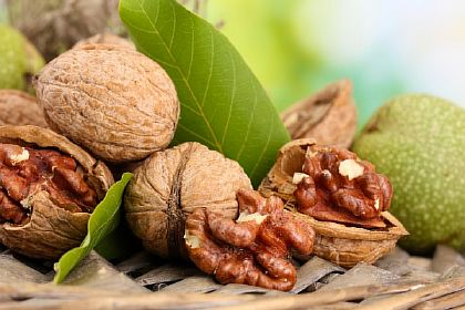 Грецкие орехи повышают иммунитет